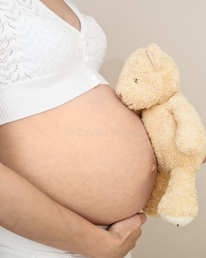 Colisão da gravidez com peluche fotografia de stock