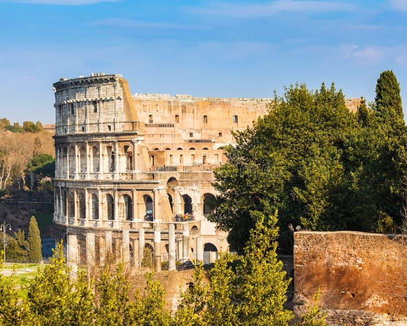 Coliseu em Roma imagem de stock