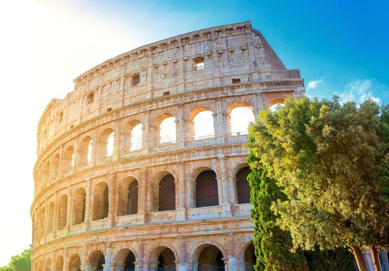 Coliseu romano no sol da manhã Italy imagem de stock
