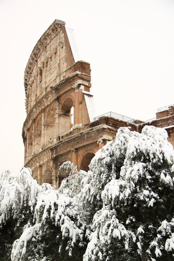 Coliseum die door sneeuw wordt behandeld stock foto's
