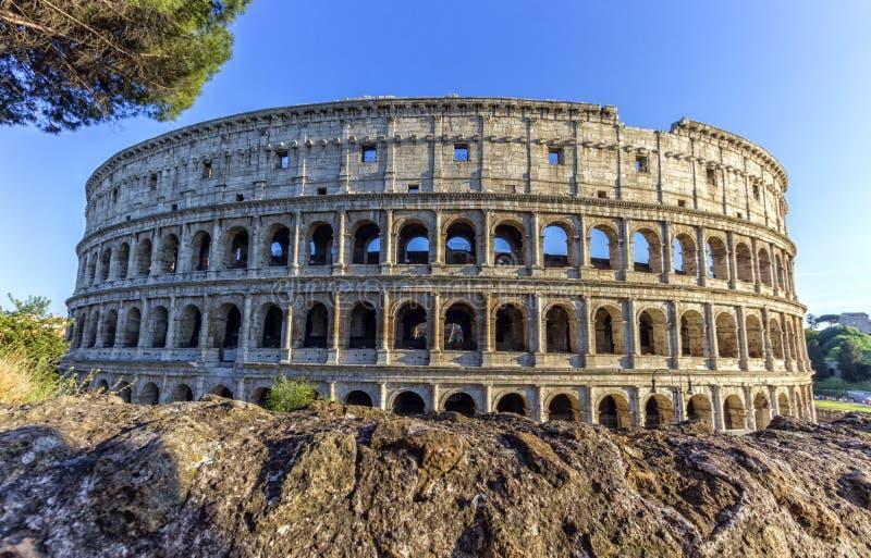 Coliseum, Roma, Italy stock photo
