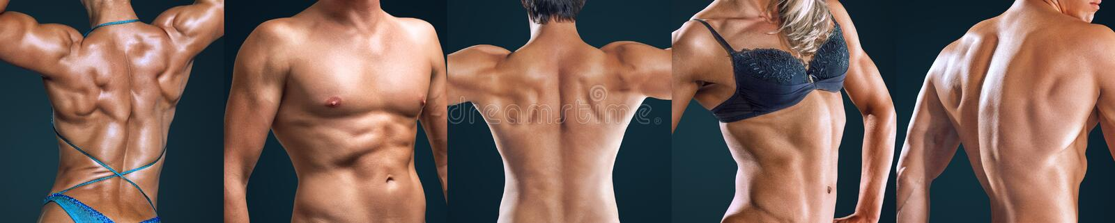Collage of athlete people torso close-up stock photography