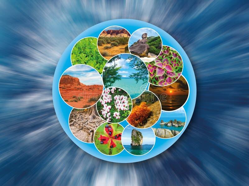 Collage auf dem Thema der Reise und des Tourismus lizenzfreie abbildung