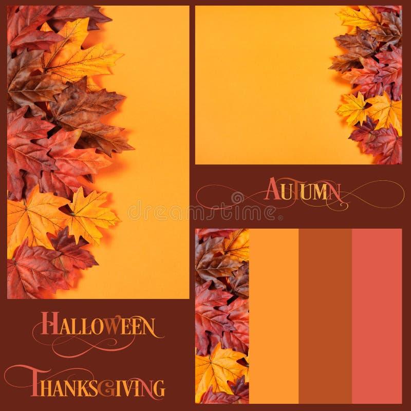 Collage av Autumn Leaves bakgrunder, gränser och text royaltyfria bilder