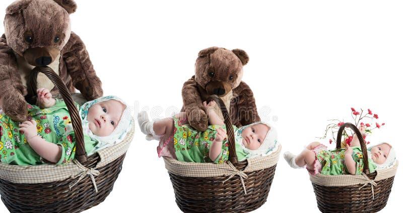 Collage av behandla som ett barn flickan i korg med leksakbjörnen som isoleras på vit bakgrund royaltyfri fotografi