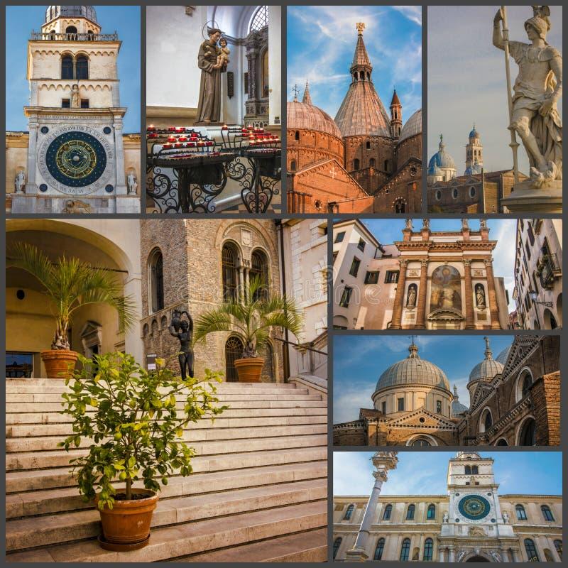 Collage av bilddragningar av Padua Italien arkivfoton