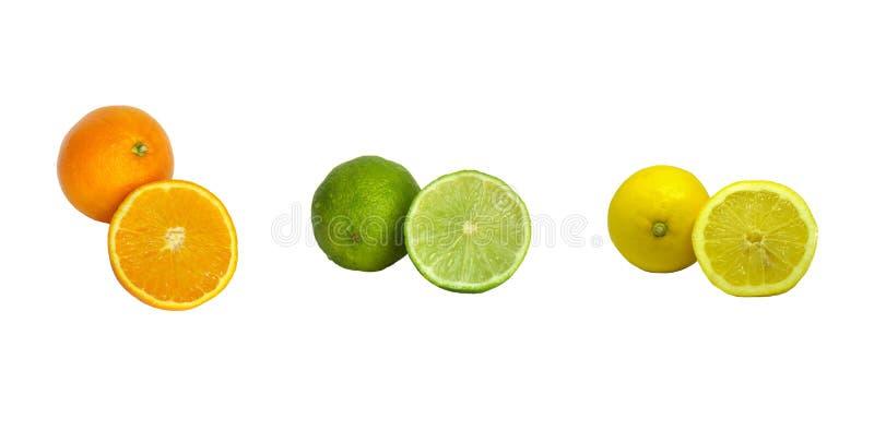 Collage av citrusfrukter som isoleras på en vit bakgrund royaltyfri fotografi