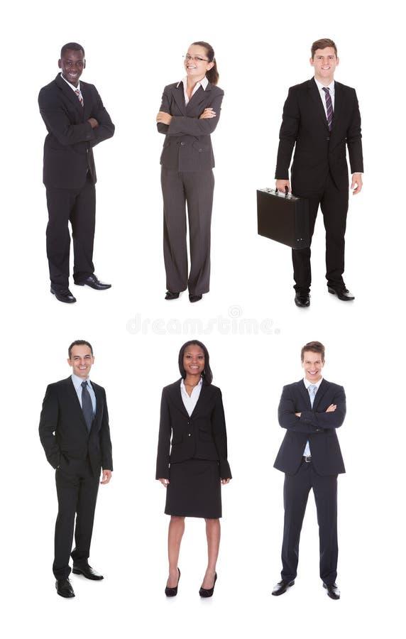Collage av det multietniska affärslaget royaltyfri bild