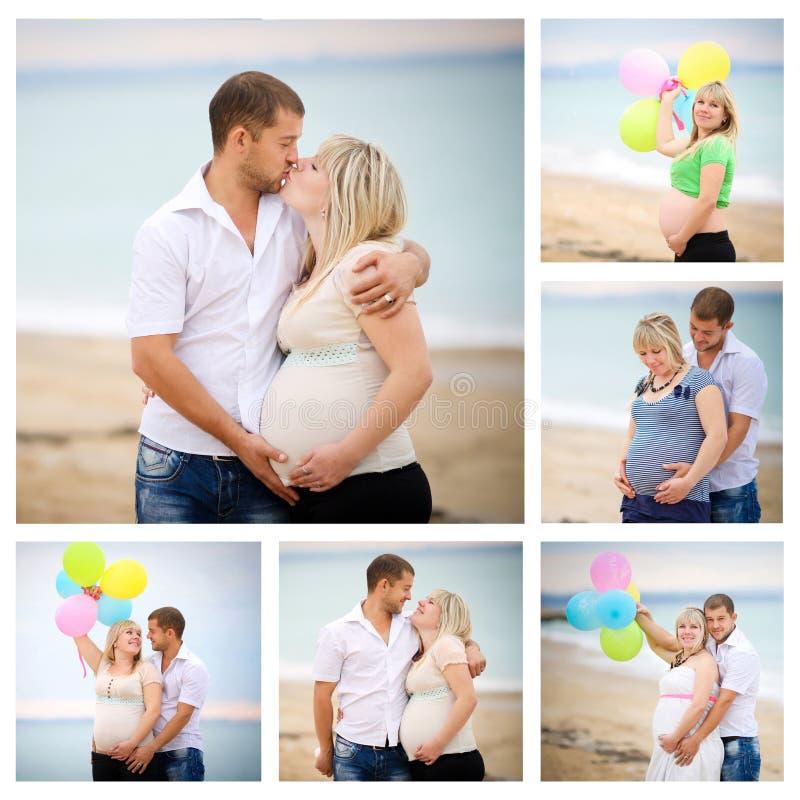 Collage av gravid royaltyfria foton