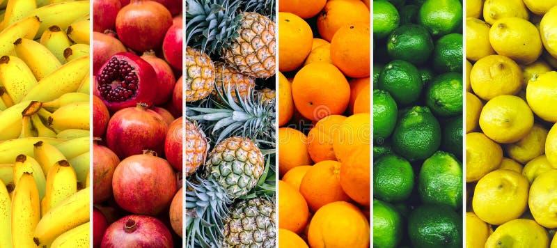 Collage av horisontalbilden för exotiska frukttexturer royaltyfri fotografi