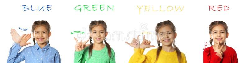 Collage av lilla flickan som visar olika ord på vit bakgrund royaltyfri foto