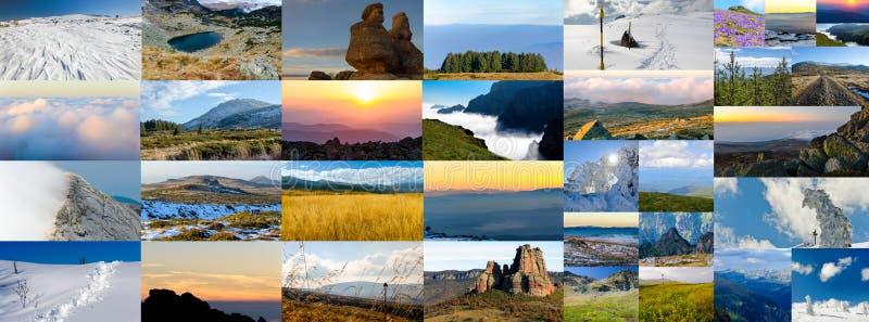 Collage av naturfoto, olika säsonger royaltyfria foton