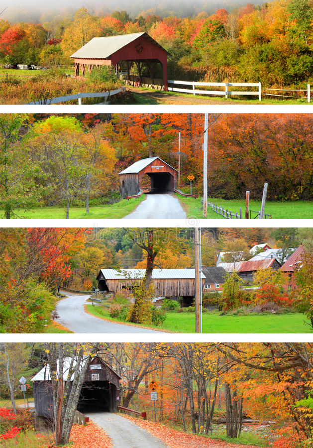 Collage av New England täckte broar royaltyfri foto