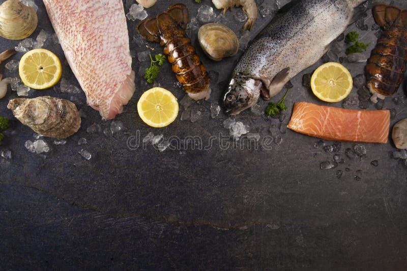 Collage av olika havs- objekt från en fiskhandlare- eller fiskmarknad arkivbild