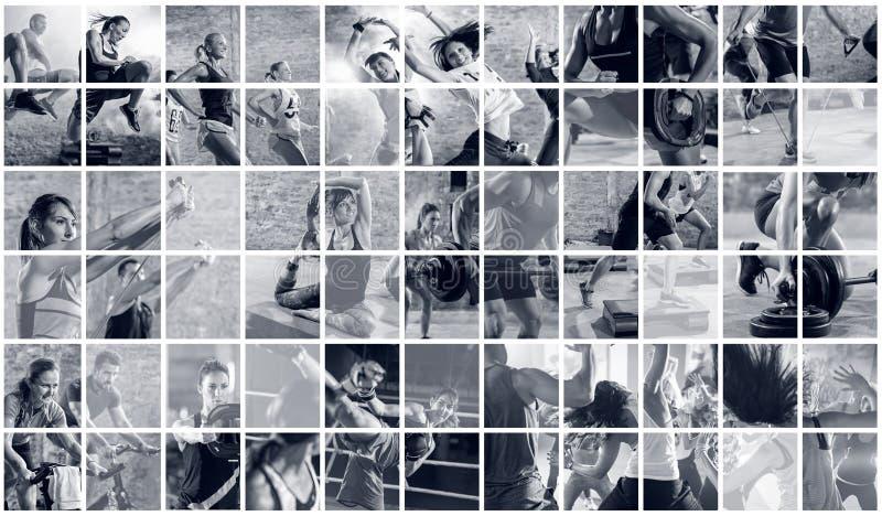 Collage av sportfoto med folk arkivbild