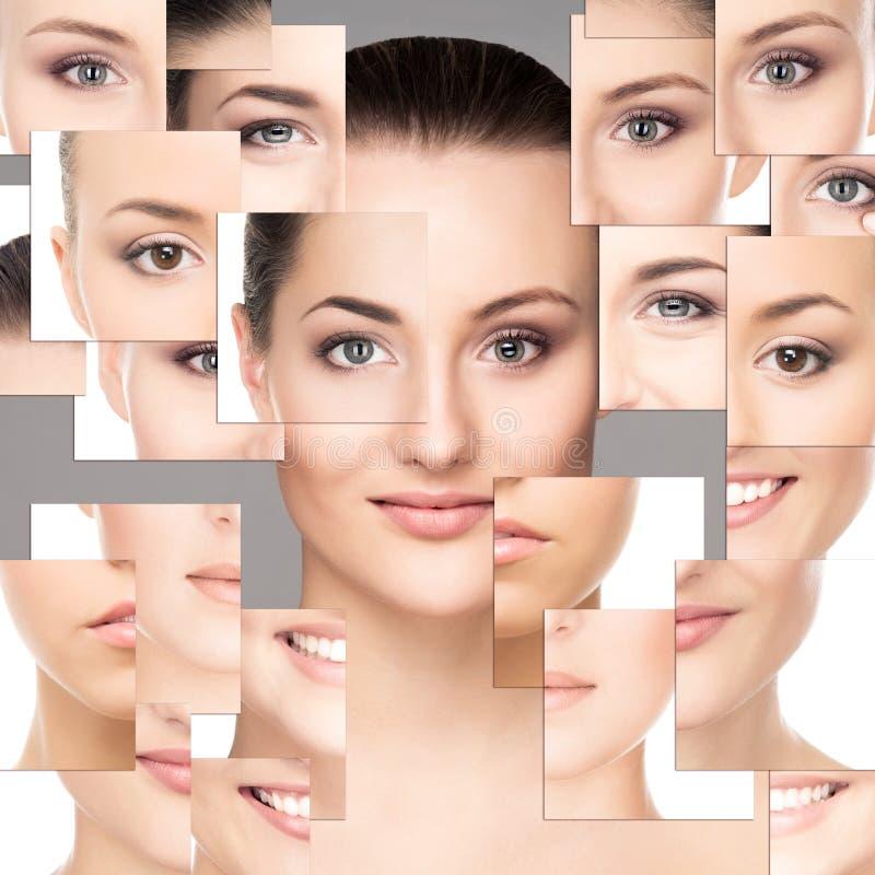 Collage av ståenden av unga nakna kvinnor royaltyfria bilder