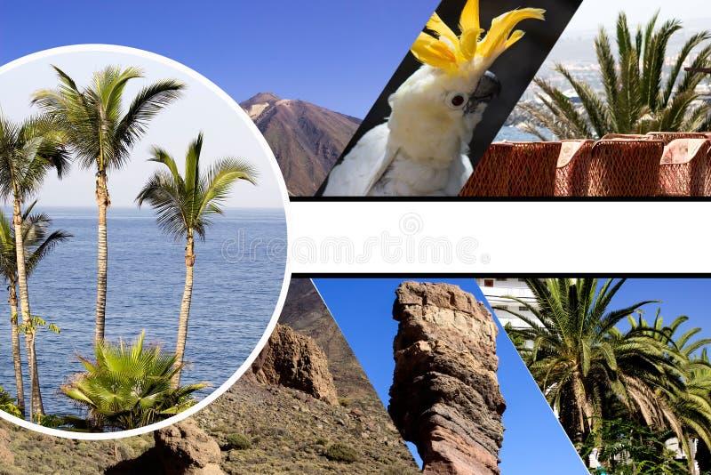 Collage av strandferie arkivfoton