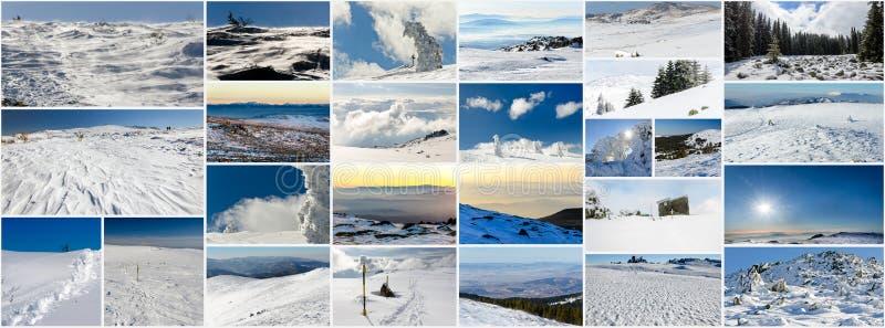 Collage av vinterfoto arkivbild