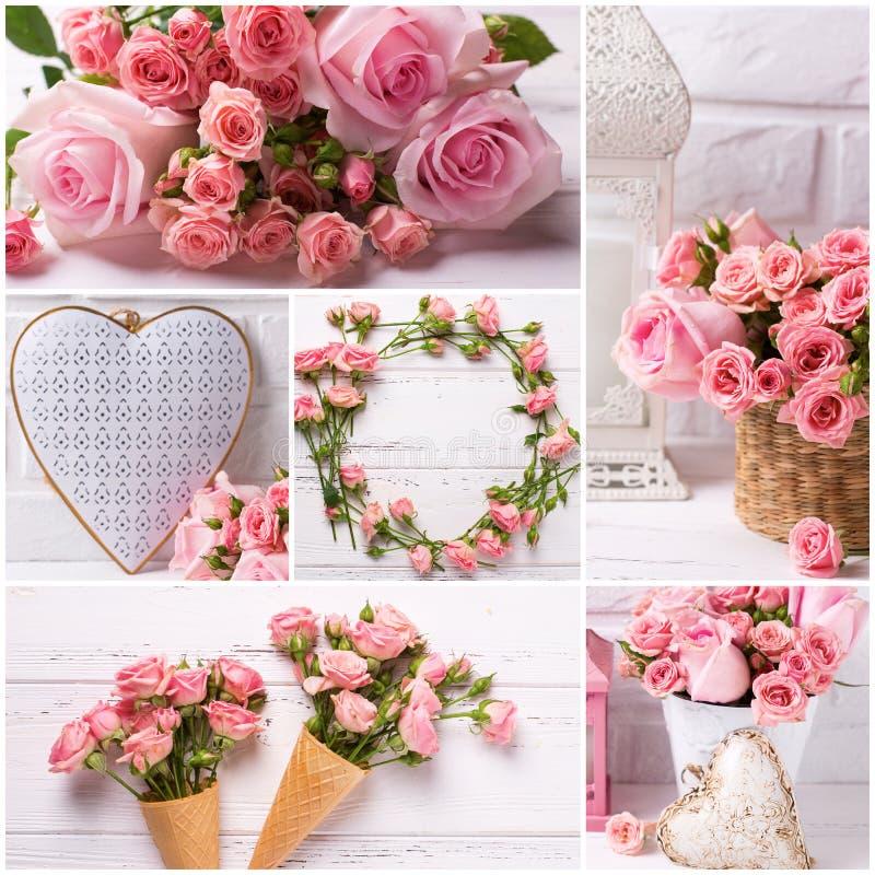 Collage avec des photos des fleurs roses tendres de roses et décoratif photographie stock