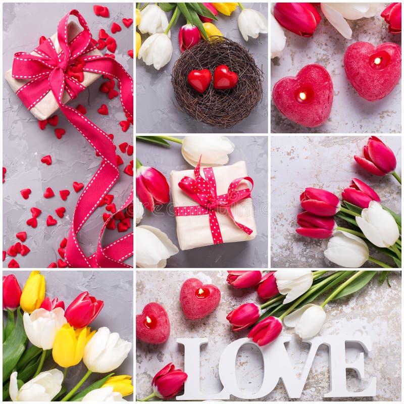Collage avec la fleur de pomme photo libre de droits