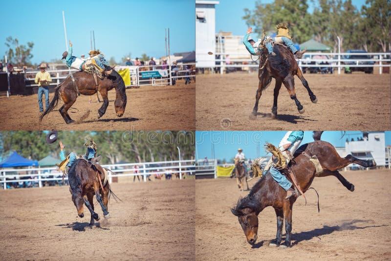 Collage Bucking a pelo del rodeo del montar a caballo del Bronc imagenes de archivo