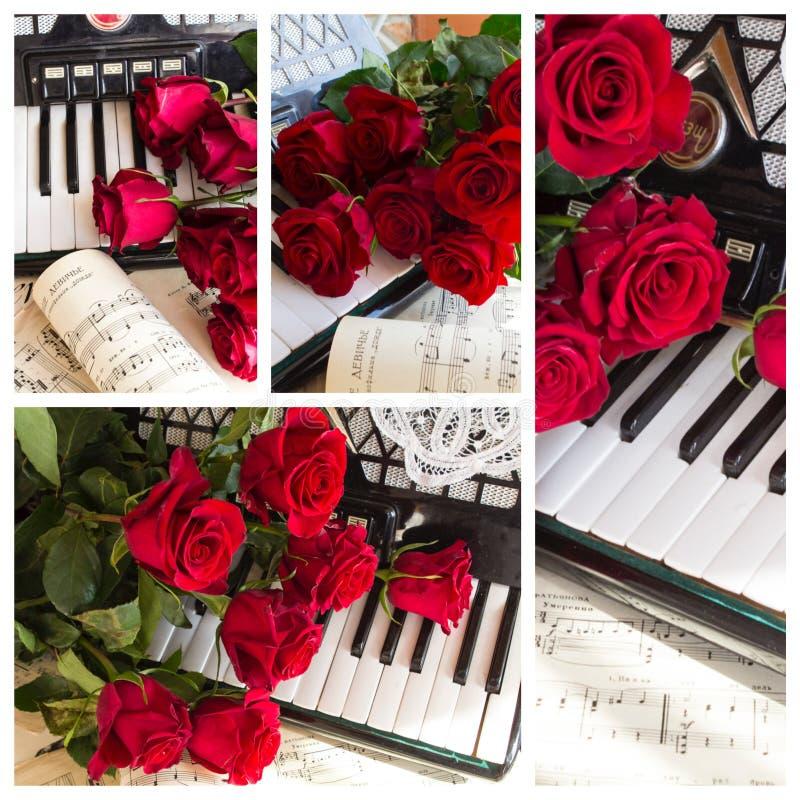 Collage con el acordeón y las rosas rojas imagen de archivo