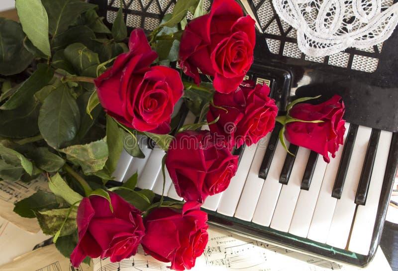 Collage con la fisarmonica e le rose rosse fotografie stock