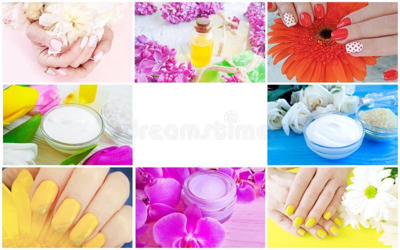 Collage cosmetico crema dei fiori del manicure femminile delle mani fotografie stock libere da diritti