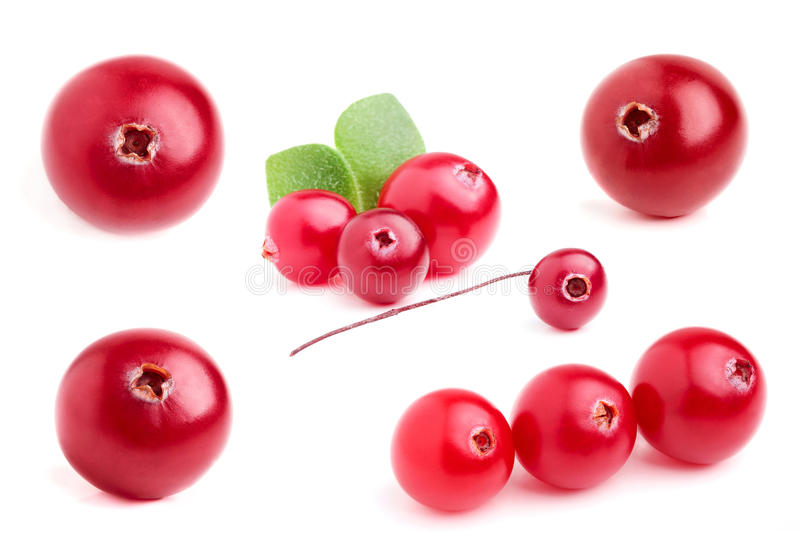 Collage cranberry closeup. royalty free stock images