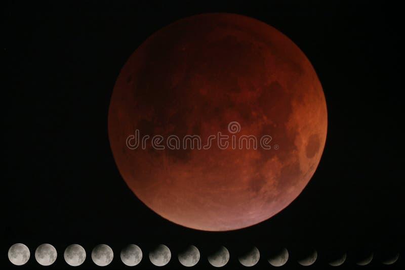 Collage d'éclipse photos libres de droits