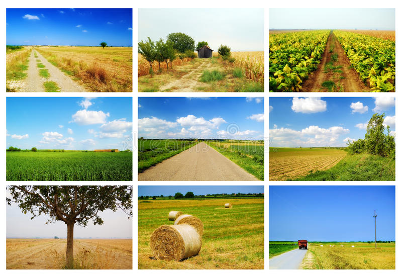 Collage d'agriculture photos libres de droits
