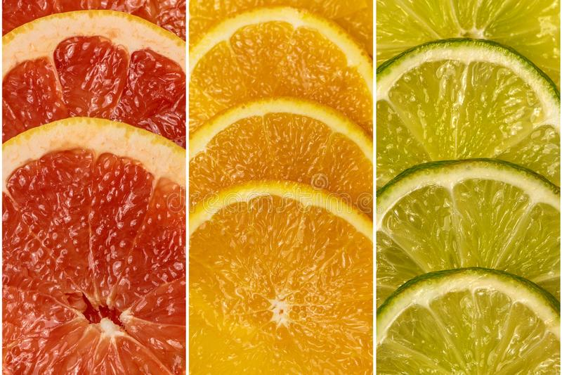 Collage da un insieme della frutta fresca dell'agrume Vista superiore fotografia stock libera da diritti
