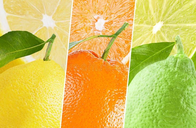 Collage de différentes images des fruits organiques naturels images stock