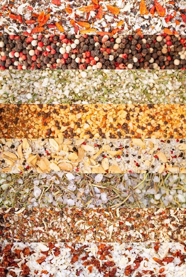 Collage de diversas hierbas y pimientas de las especias, sal del mar, verduras secadas, orégano, Rosemary, tomillo fotos de archivo