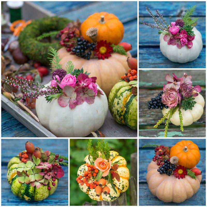 Collage de diverses images des potirons décorés photographie stock