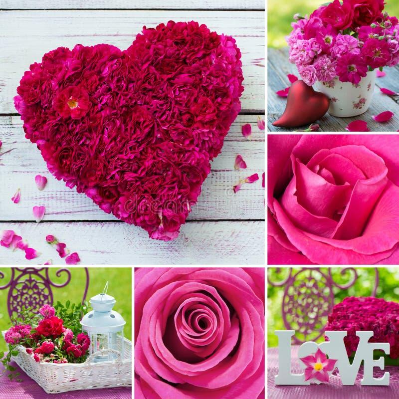 Collage de diverses images des roses roses images libres de droits