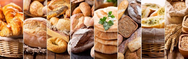 Collage de diversos tipos de pan fresco imágenes de archivo libres de regalías
