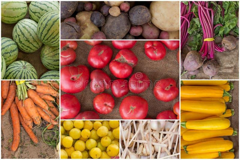 Collage de fruits et légumes photographie stock libre de droits