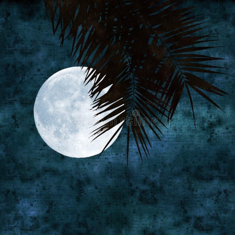 Collage de la Luna Llena ilustración del vector