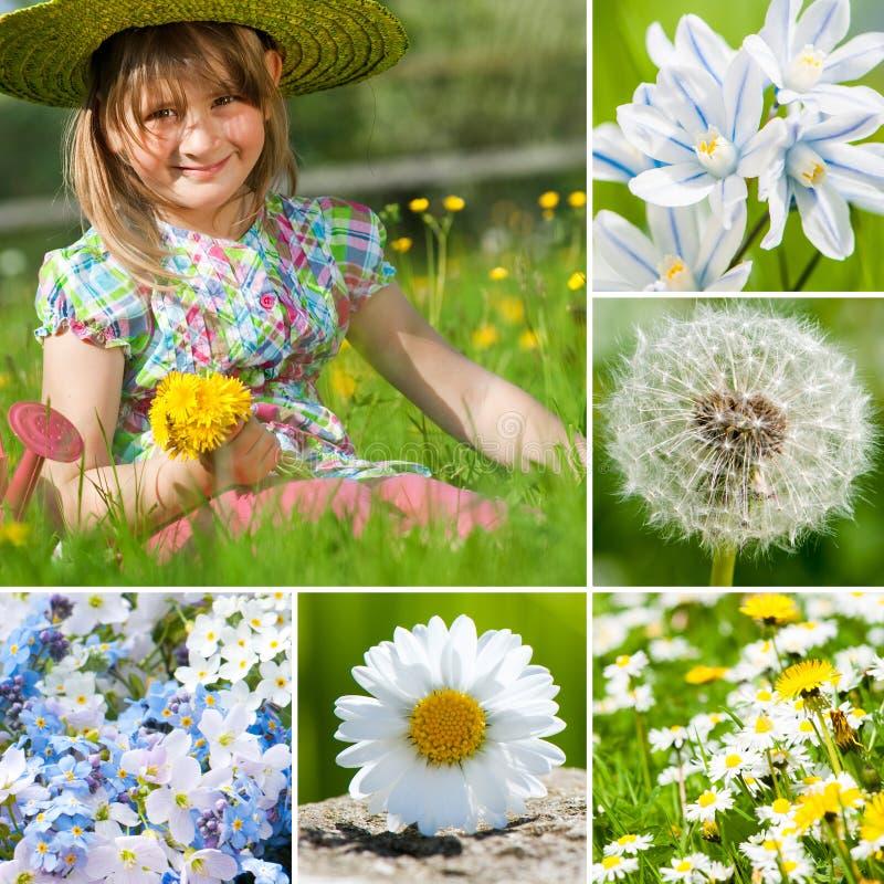 Collage de la primavera imágenes de archivo libres de regalías