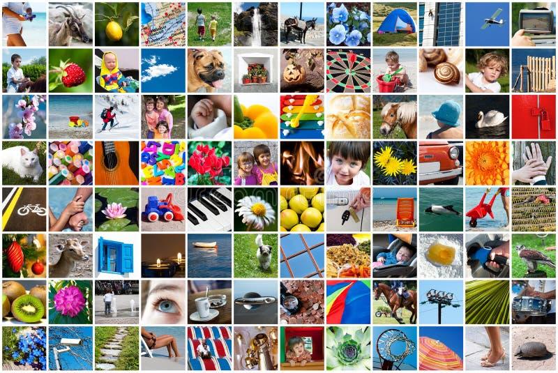 Collage de la vida imágenes de archivo libres de regalías