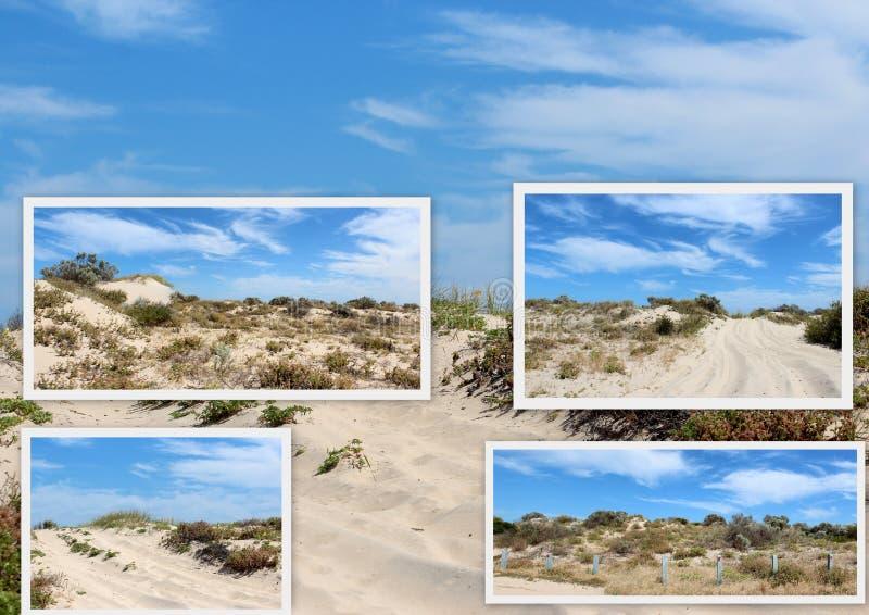 Collage de las dunas de arena cerca de Bunbury Australia occidental fotografía de archivo
