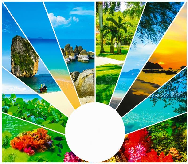 Collage de las imágenes de la playa del verano - fondo de la naturaleza y del viaje foto de archivo