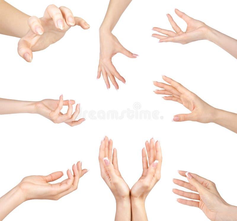 Collage de los gestos de manos de la mujer fijados, en blanco imágenes de archivo libres de regalías