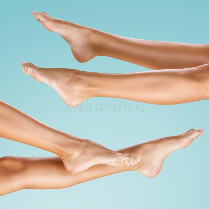 Collage de piernas femeninas perfectas y hermosas fotografía de archivo