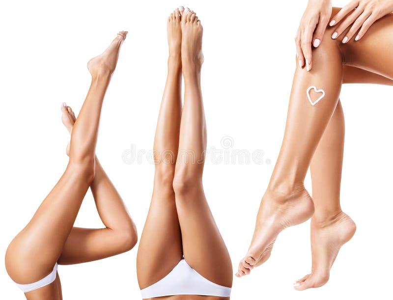 Collage de piernas femeninas perfectas y sanas foto de archivo libre de regalías