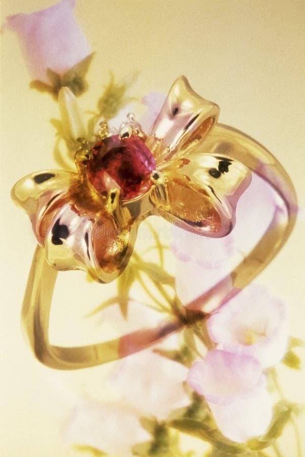 Collage de raffinage d'image de bijoux photo stock