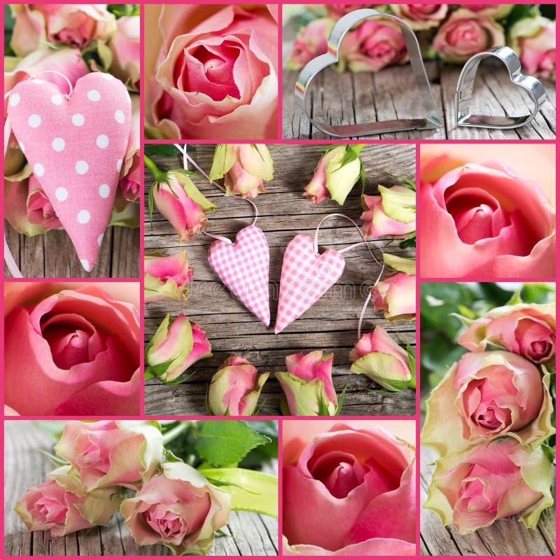 Collage de roses images libres de droits