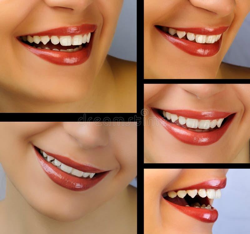 Collage de sourire image stock
