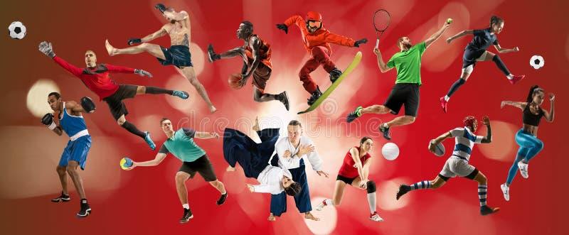 Collage de sport au sujet des athl?tes ou des joueurs Le tennis, fonctionnement, badminton, volleyball photo stock